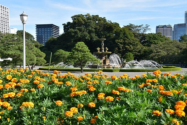 A photo of a flower bed and the fountain in the main garden. Marigolds are planted in the flowerbed. The fountain is a designated National Treasure together with the main building.