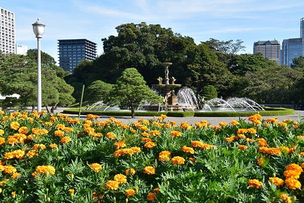 主庭的花壇和噴水池,花壇裡種植著萬壽菊。噴水池則是與本館共同指定為國寶。