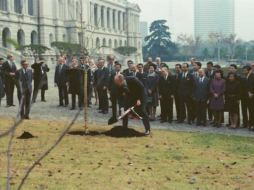 President Ford plants a young dogwood tree during the planting ceremony in the main garden